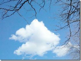 2011-04-21_15-52-49_771